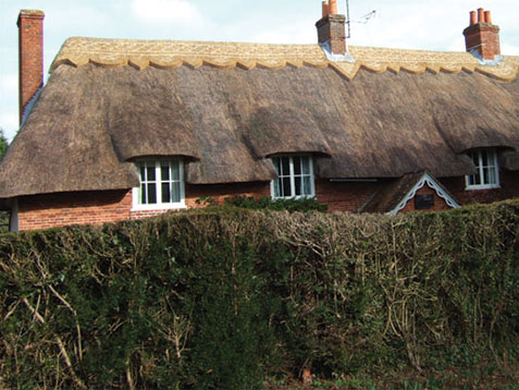 master-thatcher-winchester-thatched-cottage