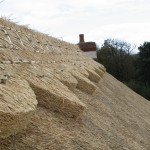 Ridge Styles on Thatched Roof hampshire